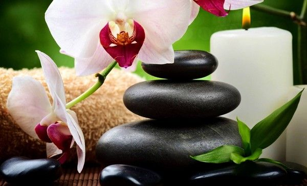 Images gifs zen page 2 - Salon toilettage zen attitude ...