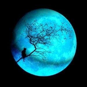 quand la lune rencontre le soleil